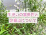【三宮もりの鍼灸治療室】手洗いの重要性と注意点!